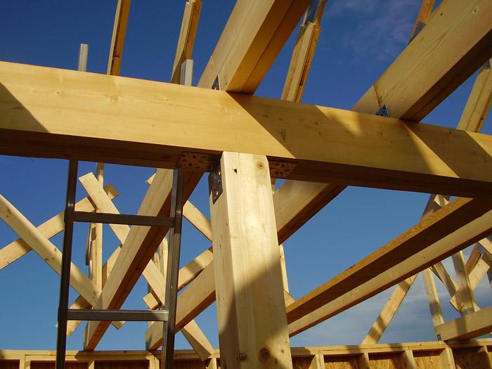 Строительство каркасного дома на сваях